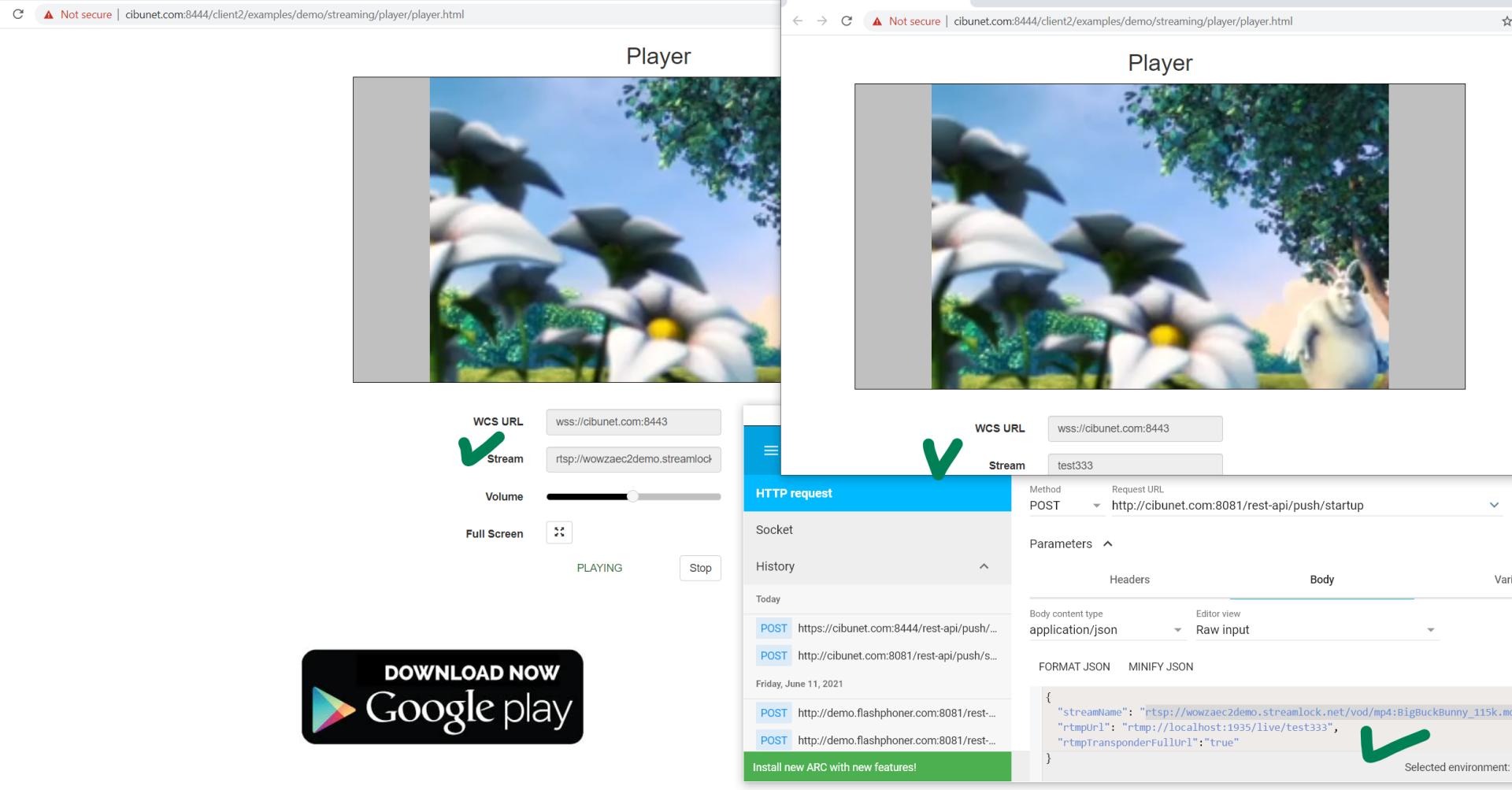 rtsp-rtmp-localhost-webrtc-play.png